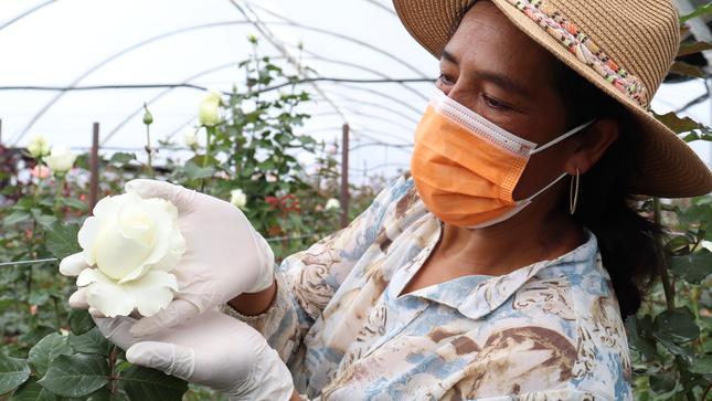 MIDAGRI impulsa el uso de sistemas de riego tecnificado en el Perú
