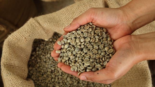 Productores de café, jengibre y cúrcuma peruanos en feria orgánica más grande del mundo