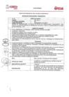 Vista preliminar de documento Proceso de Selección N° 01-2021-PLANCOPESCO/GRC