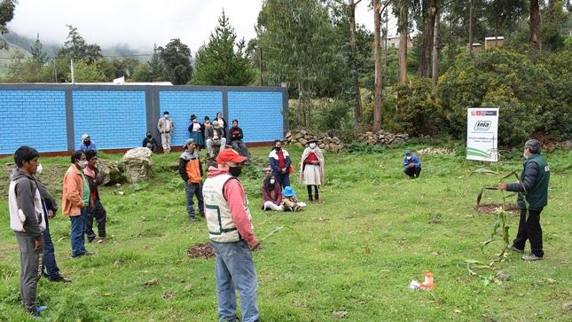 MIDAGRI capacita a agricultores de Ayacucho en manejo de plagas en maíz amiláceo