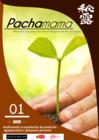 Vista preliminar de documento Pachamama enero 2021