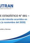 Vista preliminar de documento Reporte Estadístico N° 001 – 2021