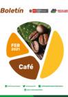 Vista preliminar de documento Boletín de Café