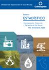 Vista preliminar de documento Boletín Estadístico de Gas Natural -Trimestre 2020-4