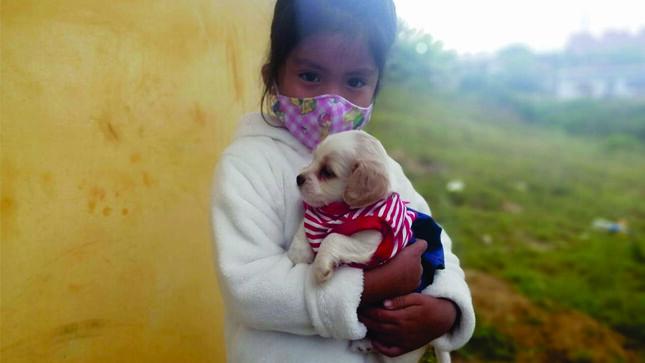 Con éxito de desarrolló primer día de Campaña de desparasitación canina gratuita en Chachapoyas