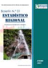 Vista preliminar de documento Boletin Estadistico Regional N° 01 - 2021