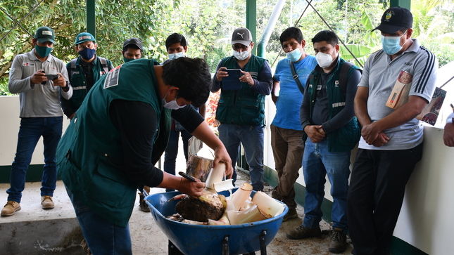 PROVRAEM participa en capacitación técnica de manejo de cultivo de plátano y banano desarrollado por el INIA Y SENASA
