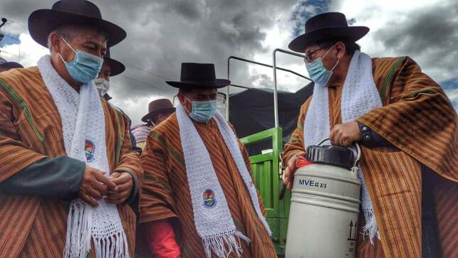 Fortalecerán la producción de lácteos y derivados en la comunidad de Chalco-Cangallo