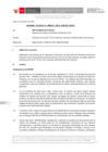 Vista preliminar de documento Informe Técnico 357-2021-SERVIR-GPGSC
