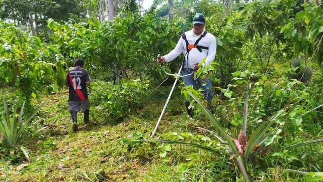 MIDAGRI: Proyecto Binacional mantiene cartera de proyectos para resolver necesidades en zona fronteriza de selva del Perú