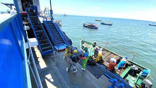 Sanipes capacitará más de 3 mil pescadores artesanales y productores acuícolas