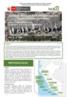 Vista preliminar de documento Reporte Mensual De Conservación En Islas Y Puntas Guaneras - Febrero 2021