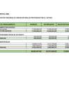 Vista preliminar de documento Saldo de Balance 2020