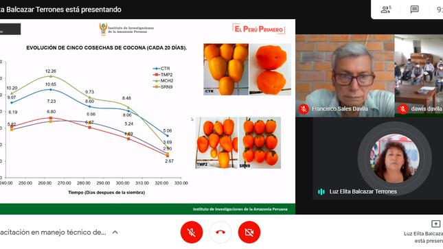 IIAP Huánuco desarrolló curso virtual de capacitación en el cultivo de la cocona