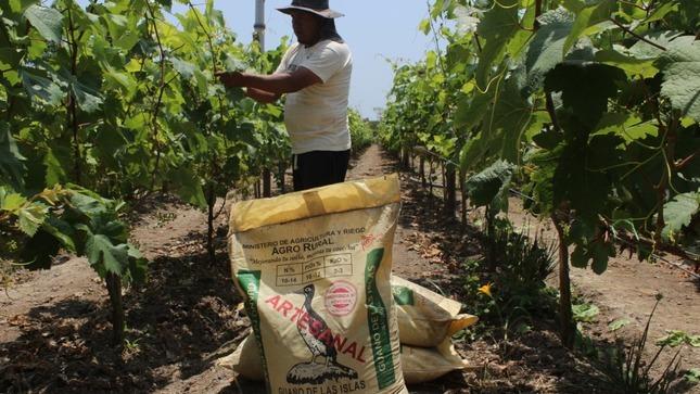 Nuevo Agro Rural: Plan de Abonamiento y Fertilización 2021 inicia acciones en Apurímac a favor de agricultura familiar