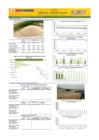 Vista preliminar de documento Boletín de abastecimiento y precio del  ARROZ - Abril 2021