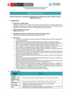Vista preliminar de documento CAS N°015-2021-Un/a (01) Analista para la Dirección Ejecutiva-DE