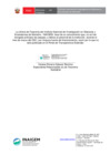 Vista preliminar de documento Aviso de Sinceramiento Marzo 2021 - Viaticos