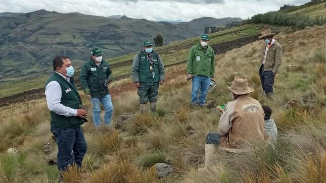Nuevo Agro Rural instala más de 8000 plantones  forestales con fines productivos en La Libertad