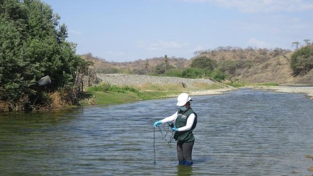 Presentaron resultados de la calidad de las unidades hidrográficas Chira y Piura 2020
