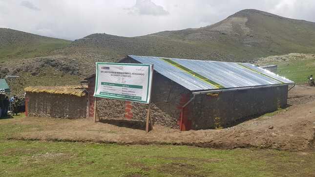 Arequipa: Nuevo Agro Rural inicia acciones para proteger más de 45 000 cabezas de ganado y cultivos ante heladas