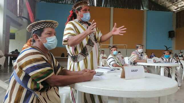 COVID-19: Ministerio de Cultura se reúne con organizaciones indígenas de la región Pasco para articular intervenciones multisectoriales
