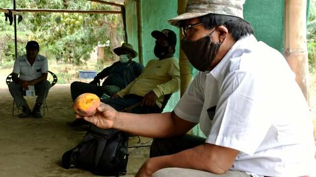 Gobierno local, SENASA y productores de la provincia se organizan para controlar la plaga moscas de la fruta