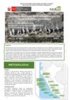 Vista preliminar de documento Reporte Mensual De Conservación En Islas Y Puntas Guaneras - Marzo 2021