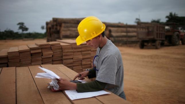 CITEmadera en conjunto con FAO realizan proyecto para  promover el uso eficiente en los recursos maderables