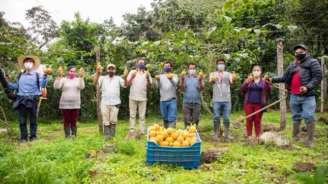 Cajamarca: Productores de granadilla triplicaron su producción tras acceder a tecnología agraria