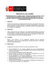 """Vista preliminar de documento Proyecto de """"Directiva que regula los lineamientos para la presentación del estudio y plan de seguridad en servicios de seguridad privada"""""""