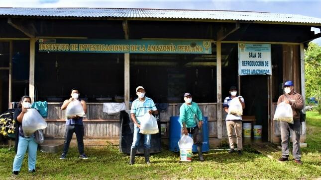 IIAP Huánuco transfirió 103 millares de alevinos de paco  a productores de Leoncio Prado
