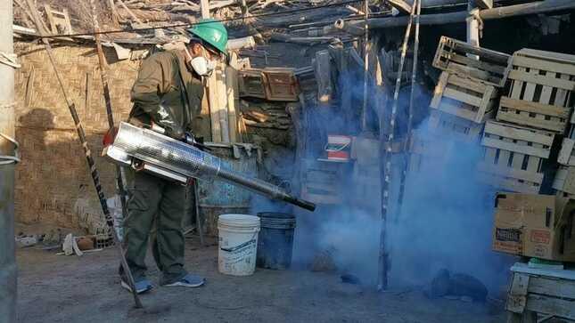 Prosigue lucha contra el dengue en la región Arequipa