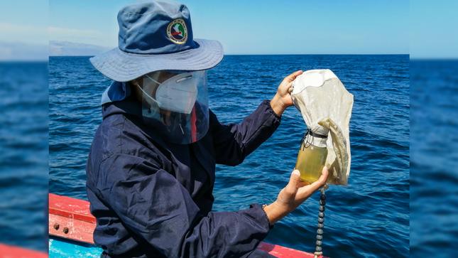 Cámana: Imarpe realiza monitoreo bio-oceanográfico mensual frente a Punta Atico