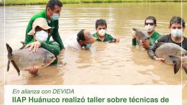 El IIAP Huánuco realizó taller sobre técnicas de cultivo  y calidad de agua