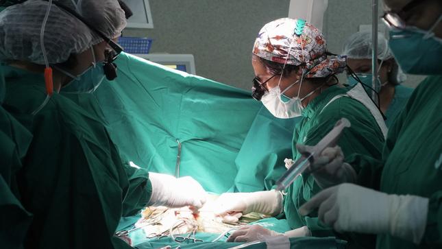 Hospital Nacional Hipolito Unanue realiza Cirugías para resolver Estrechez de la Tráquea por uso prolongado de Ventilador Mecánico