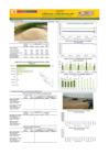 Vista preliminar de documento Boletín de abastecimiento y precio del  ARROZ - Junio 2021