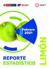 Vista preliminar de documento Reporte Estadístico de Limón