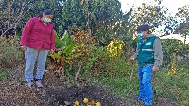 SENASA lanzará proyecto de sanidad agraria en Andahuaylas para atender demanda de productores