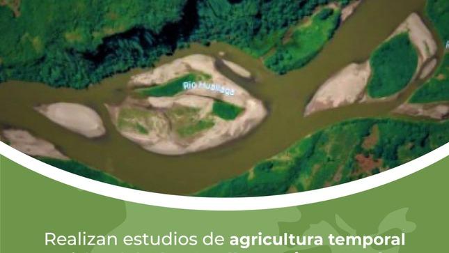 Realizan estudios de agricultura temporal en islas del Alto Huallaga, Tingo María