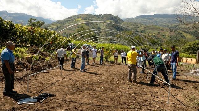 ¡Continuamos con la construcción de módulos para el proceso de cosecha y valor agregado del cacao!