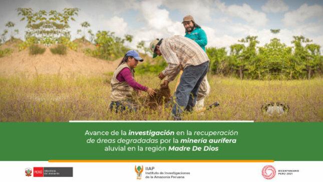 Avance de la investigación en la recuperación de áreas degradadas por la minería aurífera aluvial en la región Madre De Dios