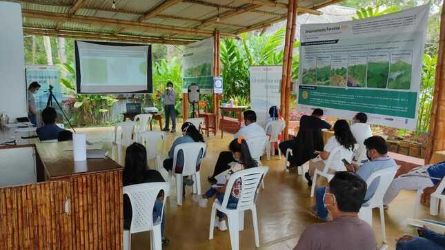 Pueblos indígenas participan en el proceso de ordenamiento forestal de San Martín