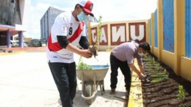 Proyecto Especial Binacional Lago Titicaca dona  más de  2 mil árboles a la Universidad Nacional de Juliaca