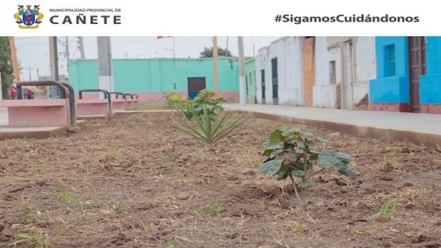Destacan labores de Trabaja Perú en limpieza, mantenimiento y acondicionamiento en C.P. Cuiva