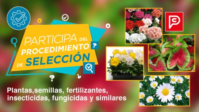 PERÚ COMPRAS invita a proveedores de plantas, semillas, fertilizantes, insecticidas y fungicidas a participar en contratación por encargo