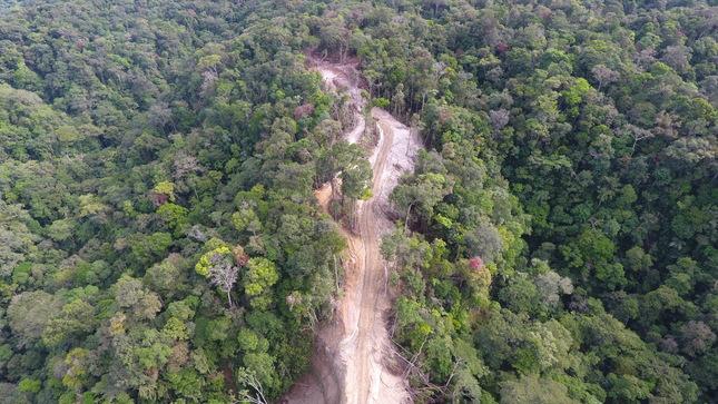 OSINFOR: Equipo Operativo avanza con estudio para estimar el índice de tala y comercio ilegal de madera en el Perú durante el 2018