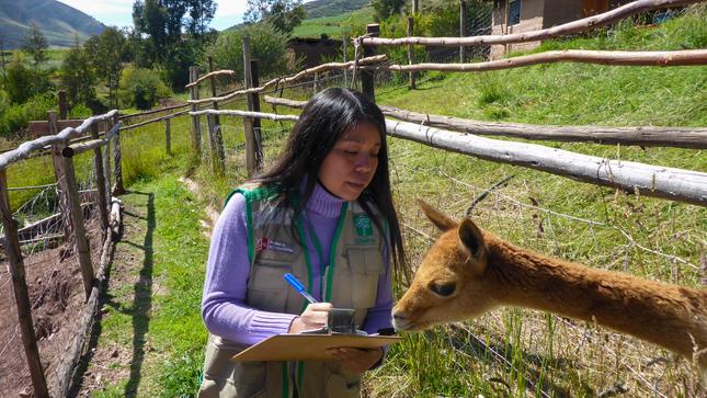 OSINFOR implementará programa SMART para fortalecer procesos de supervisión en centros de cría de fauna silvestre