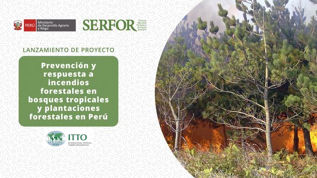 SERFOR y cooperación japonesa se unen en proyecto para la prevención de incendios forestales en cinco regiones