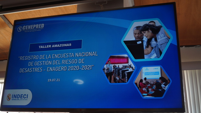 """GOREA a través de la Dirección Regional DENAGERD participó activamente del Taller """"Registro de la Encuesta Nacional ENAGERD 2020 - 2021"""""""